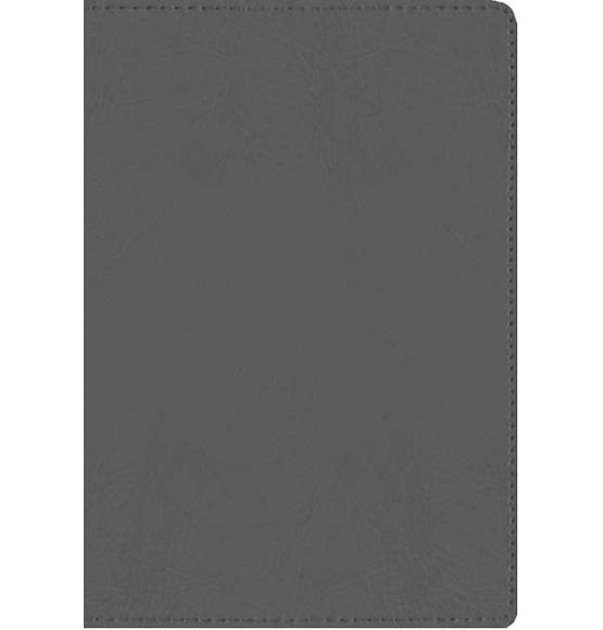 Message Compact Bible Grey
